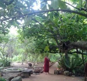 Tijdens de retraite mediteren we één avond bij een monnik op een eiland.